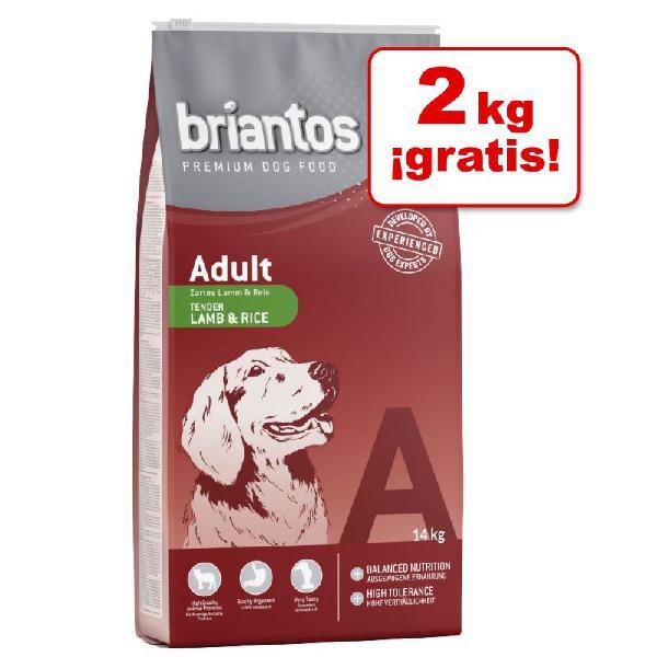 Briantos 14 kg pienso para perros en oferta: 12 + 2 kg