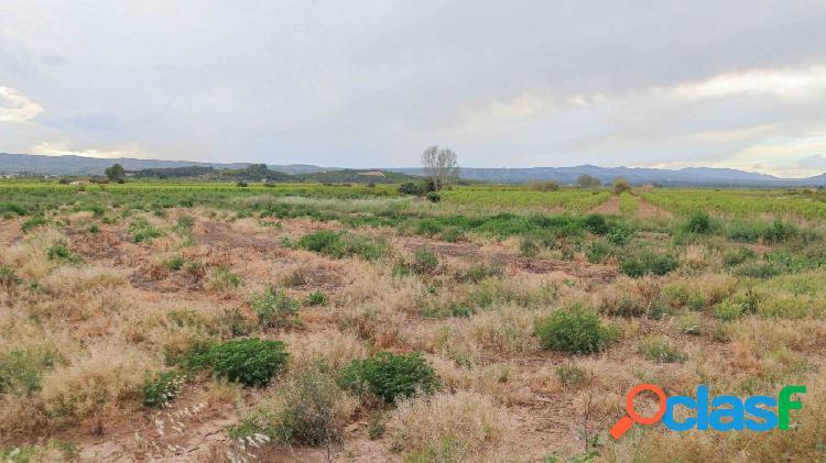 Dos terrenos en venta en Alberique 3
