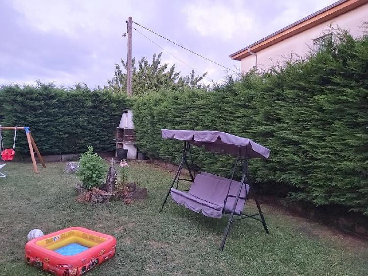 Leylandi. cupressocyparis. setos. jardín. piscina.