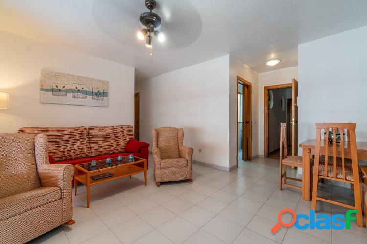 Amplio apartamento en Orihuela 2