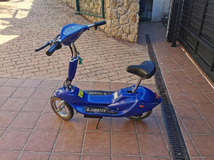 Patinete electrico scooter 250w