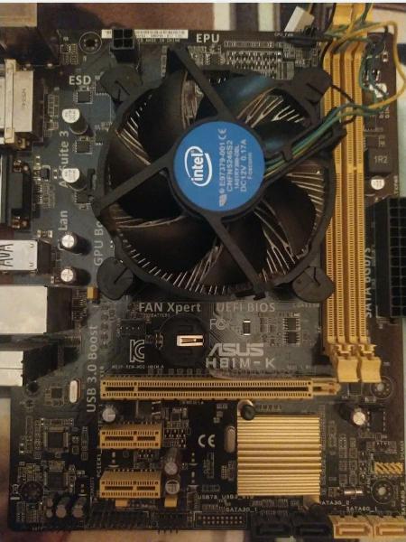 Intel i3 4170 con disipador × placa base