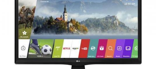 Lg televisor led 24 hd smart tv wifi