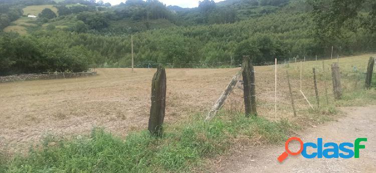 Terreno rústico en Argomilla de Cayón. 1