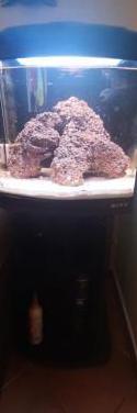 Acuario marino boyu 60 litros
