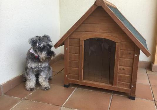 Caseta perros pequeños/medianos de madera