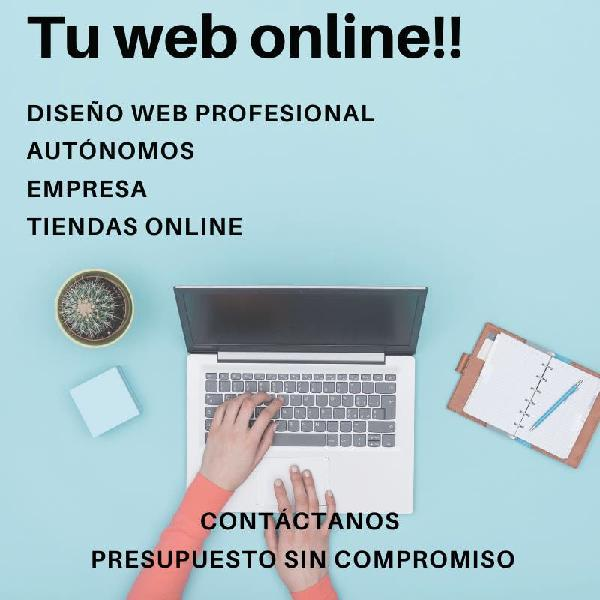 Diseñamos tu página web profesional