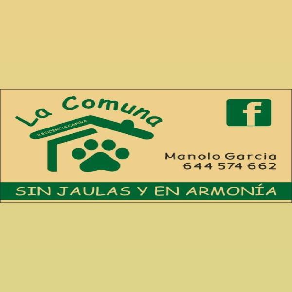 Residencia canina la comuna