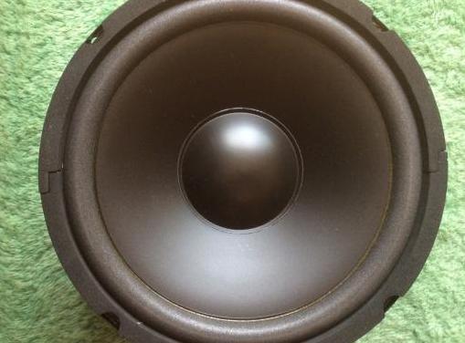 Altavoz woofer 100 wattios 20 cm