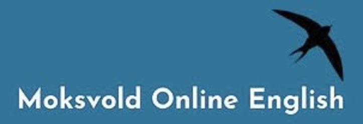 Clases de inglés online con moe classes