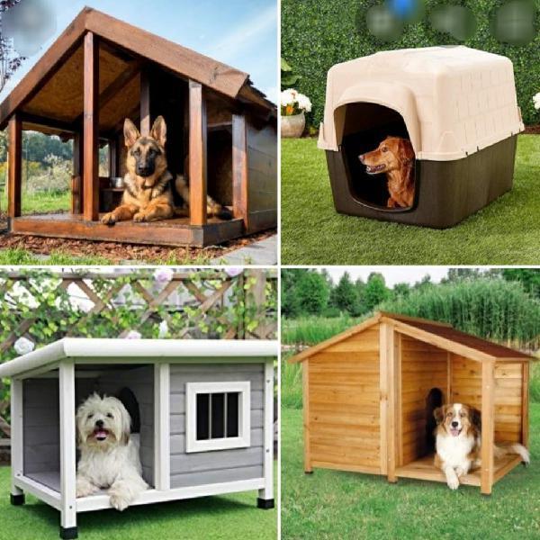 Encargado residencia canina