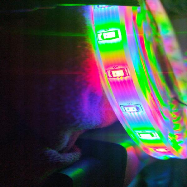 Luces led rgb bluetooth