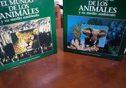 El mundo de los animales discos libros