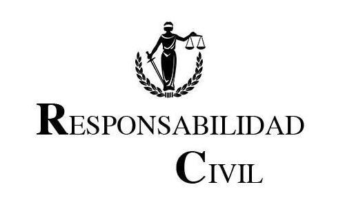 Abogado responsabilidad civil