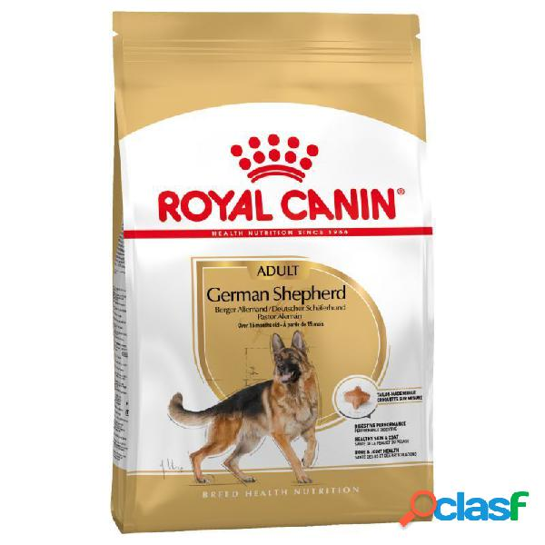 Royal canin pastor aleman adult 11 kg.