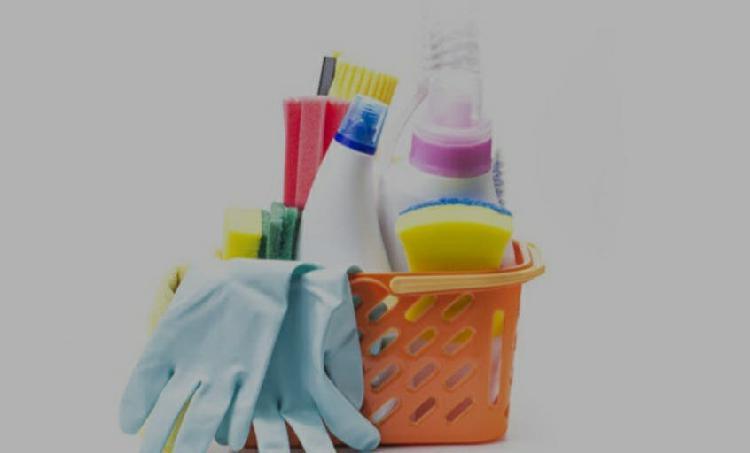 Busco asistenta hogar o limpieza casa