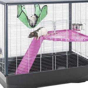 Jaula nueva para roedores
