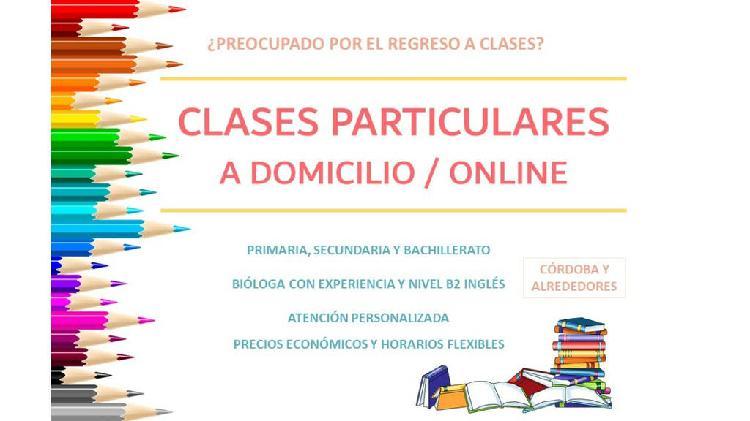 Clases primaria, secundaria, bachillerato
