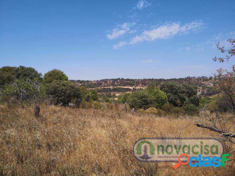 Se vende finca de terreno de 27.000 metros rústica en la población de almorox