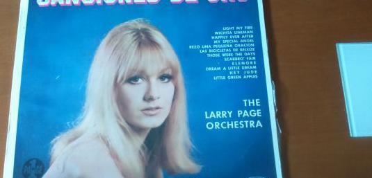 Vinilo lp the larry page orchestra