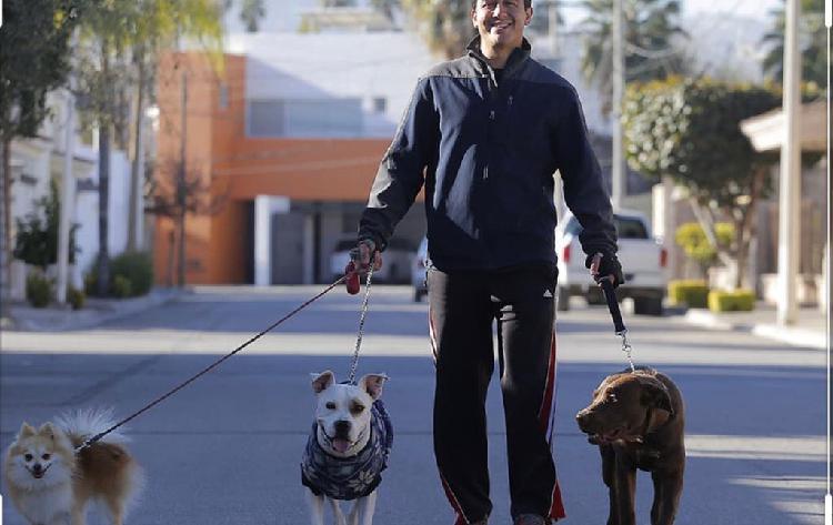 Paseo tu perro ,mucha experiencia