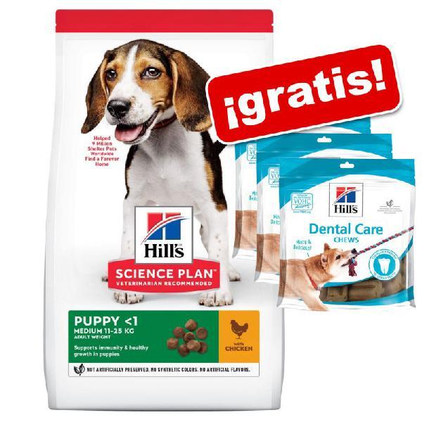Hill's science plan pienso para perros + 3 snacks hill's