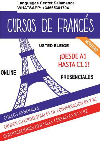 Francés primaria secundaria, delf y dalf online o