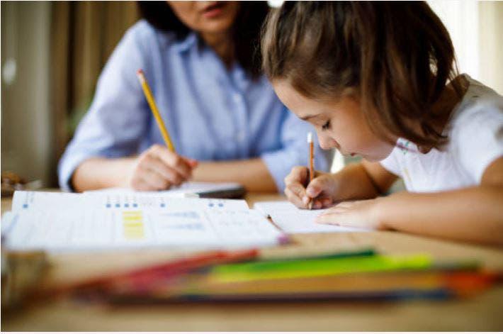 Clases particulares a domicilio, apoyo escolar.