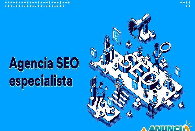Agencia seo de posicionamiento web - madrid