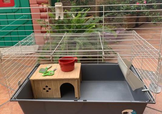 Jaula para roedor, conejo, coballa, chinculla....