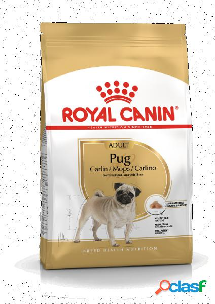 Royal canin pug (carlino) 25 adult 3 kg.