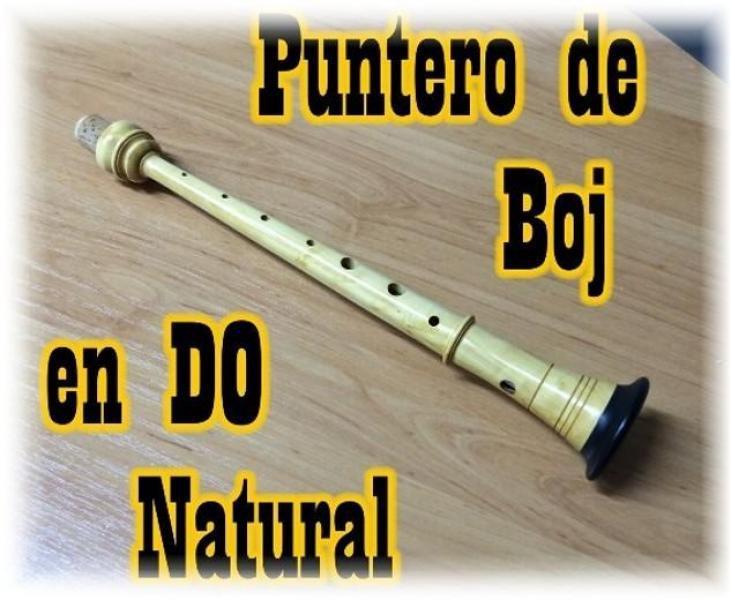 Vendo puntero de boj español en do natural para gaita
