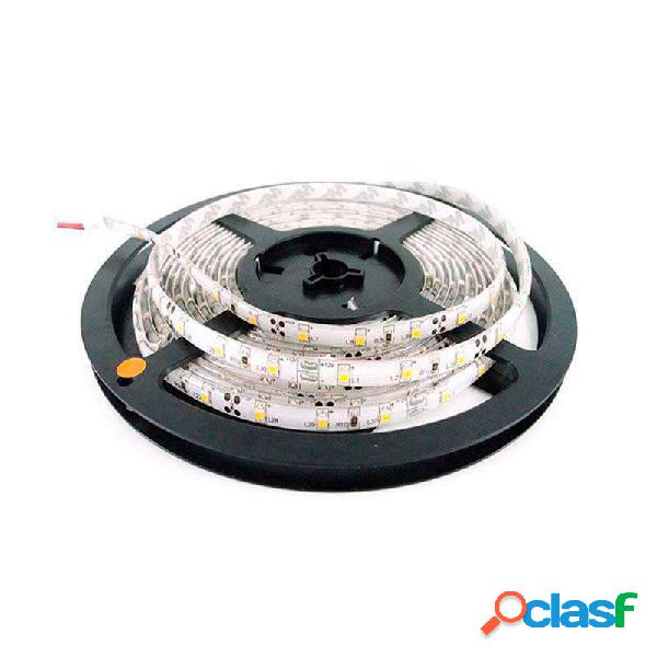 Tira led basic smd5050 dc12v 5m (60 led/m) - ip20 verde