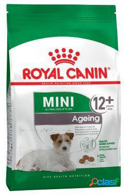 Royal canin pienso mini ageing +12 3.5 kg