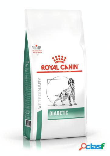 Royal canin pienso diabetic canine 12 kg