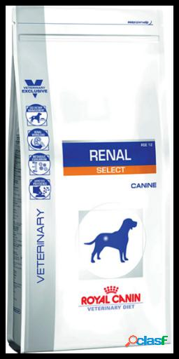 Royal canin pienso renal select canine 10 kg