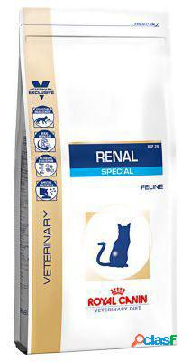 Royal canin pienso renal special feline 4 kg