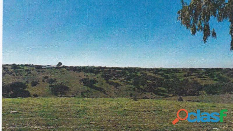 Finca rústica de 172 hectáreas Caceres/Trujillo