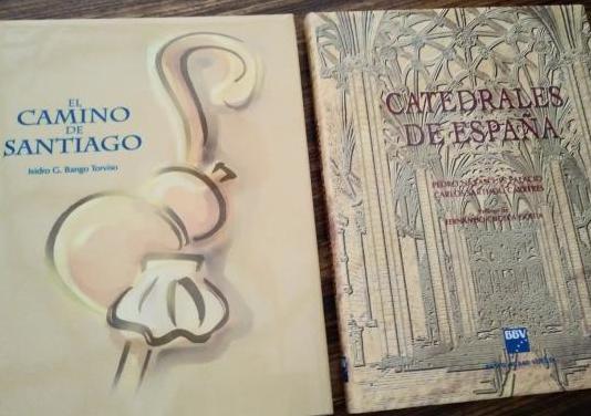 Libros catedrales españa y camino santiago