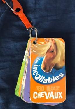 Preguntas sobre caballos ( francés )