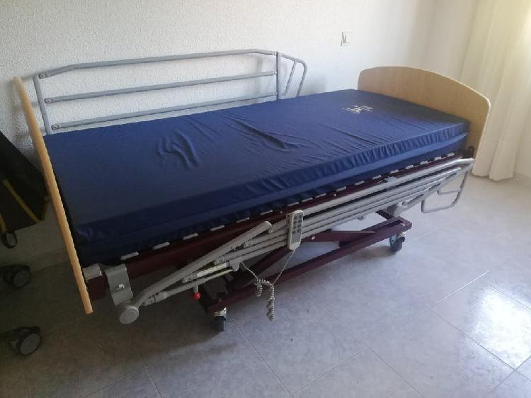 Cama ortopédica articulada con colchón