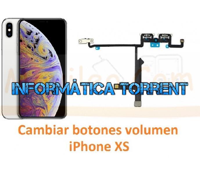 Cambiar botones volumen iphone xs