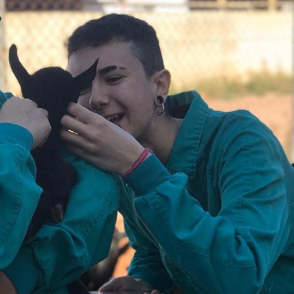 Paseador / cuidador mascotas