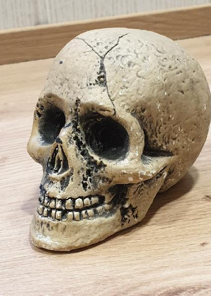 Skull gótico sobremesa tallado