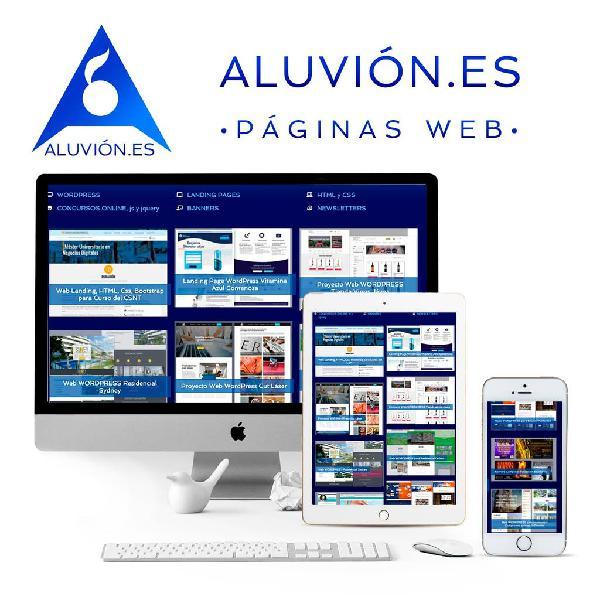 Diseño páginas web económicas para su negocio