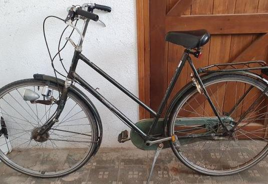 Bicicleta paseo union holland arizona