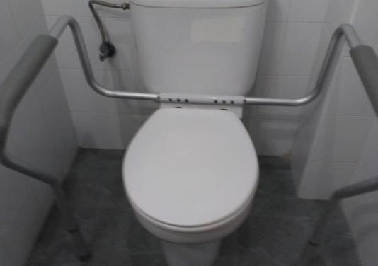 Asistente para tazas wc