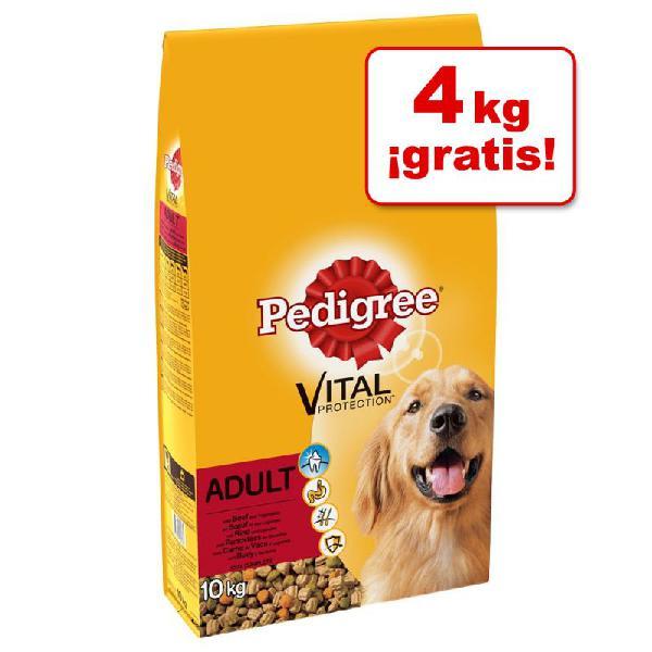 Pedigree pienso para perros 13 a 15 kg ¡hasta 4 kg gratis!