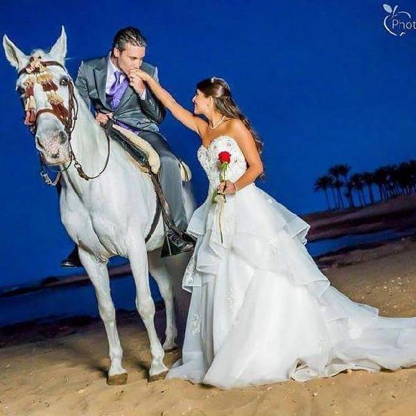 Caballos para bodas & eventos comunidad valencian