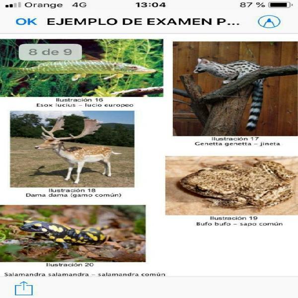 Temario, práctico oposiciones biología y geología